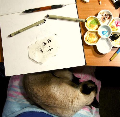 Cat and Sketchbook