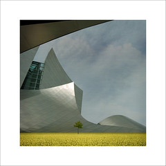 Serene... (Julian E...) Tags: texture grass architecture square surreal gehry 4sale infinestyle