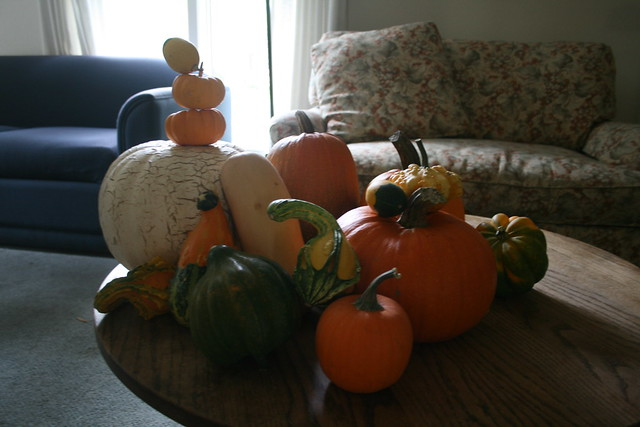 all the gourds/pumpkins in our apartment at one time