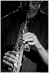 Narcissus Quartet @ CantaloupeCaf Aarschot (Patrick Van Vlerken) Tags: bw blackwhite jazz cantaloupe jazzmusic jazzmusicians jazzlive aarschot cantaloupecaf narcissusquartetaarschot