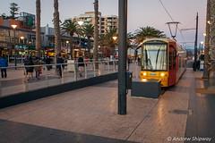 Moseley Square, Glenelg, SA (andrew52010) Tags: glenelg moseleysquare beach tram southaustralia adelaide glenelgtram