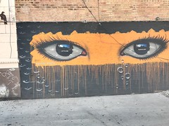 Real Eyes Realize Real Lies (lcncrtr) Tags: birds streetart graffiti urbanlife cities citylife eyes chicago