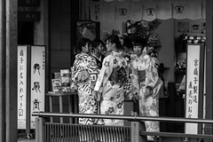 Kimonos in Kyoto (PhredKH) Tags: kimono kimonos womeninkimonos kyoto kyotostreet streetscene streetphotography japanesepeople japaneseculture japan japanese japanesestreets canon canoneos canonphotography outdoorphotography outdoor outdoors giondistrict photosbyphredkh phredkh fredkh