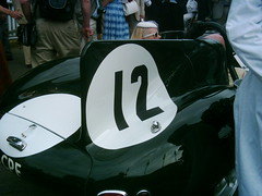 D-Type fin - Sir Stirling Moss tribute parade assembly Goodwood Revival 2009 (74Mex) Tags: moss stirling parade tribute sir 2009 goodwood assembly revival dtype
