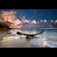 Driftwood (Garry - www.visionandimagination.com) Tags: ocean longexposure blue light red orange tree water clouds sunrise canon dawn coast framed australia brisbane driftwood qld queensland cloudscape shutterspeed slowshutterspeed supershot abigfave goldcollection flickrclassique imagicland wwwvisionandimaginationcom