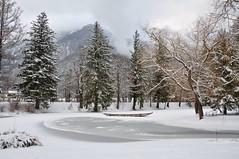 Der Ferne Klang (anuwintschalek) Tags: park schnee winter white snow ice landscape austria pond january getty lumi teich eis weiss niederösterreich 2010 talv jää tiik kurpark reichenau valge 18200vr reichenauanderrax nikond90 derferneklang updatecollection travelsofhomerodyssey