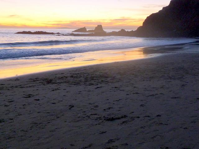 Patrick Nouhailler visiting Laguna Beach 1-3-2010 12-12-42 PM