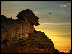 Is it Sphinx  ? (Bashar Shglila) Tags: mountains rock sphinx that is natural like it looks libya region sculptures libyen akakus lbia libi mywinners libiya platinumphoto liviya libija theunforgettablepictures   saariysqualitypictures a  thepowerofnow   lbija  lby libja lbya liiba livi   thatrocklookslikea