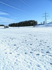 Allgaeu 2010 Januar Schnee 3