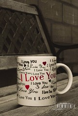 i L O V E You.. (- M7D . S h R a T y) Tags: cup garden focus random iloveyou goodmorning  wordsbyme allrightsreserved
