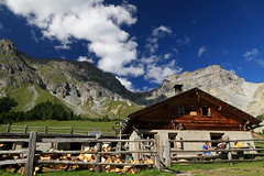 Alp Sesvenna (peterderooij) Tags: mountain alps landscape switzerland engadin sesvenna