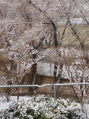 Snow DAY! 012