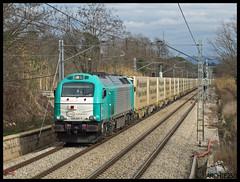 Vas tard noi! (J.Bonet) Tags: england les angel euro rail trains db cargo enero silla 24 ecr 011 2010 portbou cardedeu renfe 355 gener shenke adif franqueses anglaterra