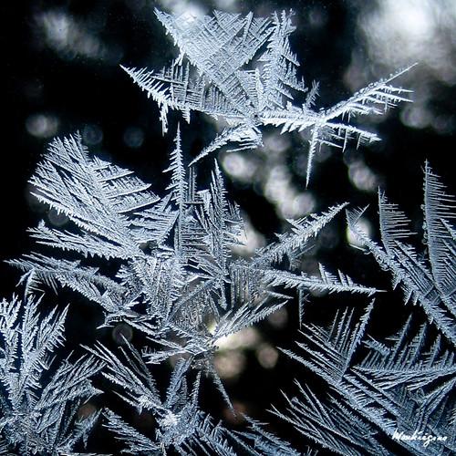 Silver Crystals - Cristaux d'argent