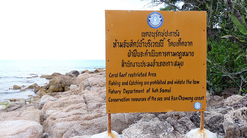 Koh Samui Chaweng Beach South End - コサムイ チャウエンビーチ南端8