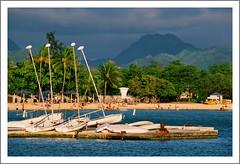 (JØN) Tags: trees mountains film beach boats hawaii harbor dock sand nikon fuji oahu f100 palm scan koolau velvia transparency sail honolulu 50 velvia50 hickam hickamafb 70200mmf28 ncps