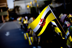 The Brunei Flag
