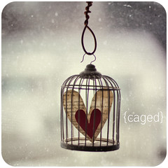 {Caged} (bford13) Tags: red texture love square heart cage roundedcorners cagedheart bford13 3652010