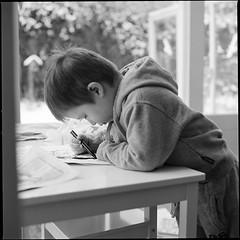 black pencil (Istvan Penzes) Tags: bw white black 6x6 thomas snapshot handheld fujineopan400 emofin hasselblad503cw blackpencil nikonsupercoolscan9000 makroplanar1204 penzes
