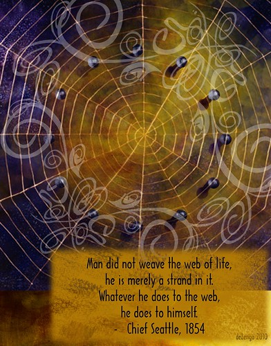 Chief Seattle : the Web of Life