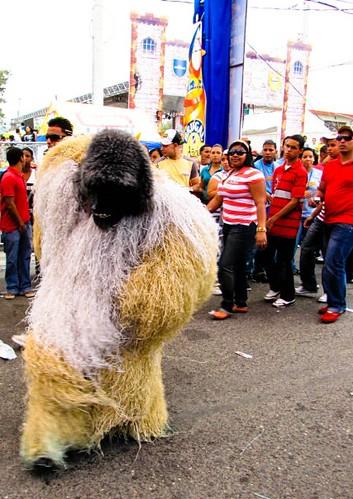 Fotos Del Carnaval Vegano