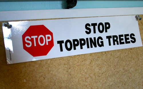 stop topping trees