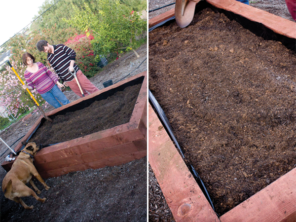 raised garden bed - soil time