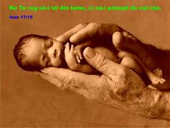 Ioan 17-15 (Palosi Marton) Tags: kids childrens copii crestine versete biblice