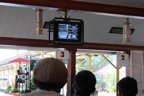 Watching Muay Thai Boxing at Chiang Mai Railway Station