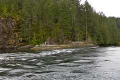 Sunshine Coast Tours - Skookumchuck Narrows / Sechelt Inlet