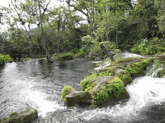 IMG_2737 (Ezniter) Tags: waterfall cascada huasteca sanluispotosi tamul tamasopo