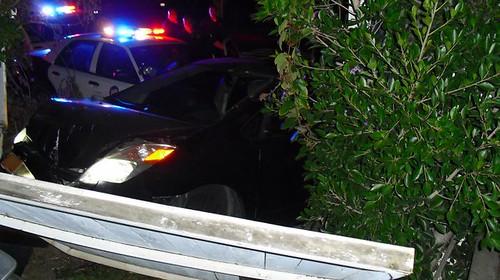 Police Car Chase in Venice Beach 3