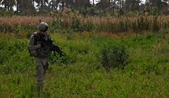 Field in Taji, Iraq (The U.S. Army) Tags: pink gr