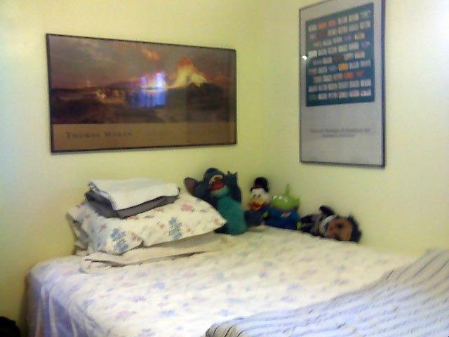Bedroom SE corner