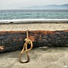 Burned Log (Osvaldo_Zoom) Tags: sea italy beach canon log sand rope calabria burned g7 messinastrait