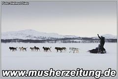 Finnmarkslopet: Leaving--Kirkenes