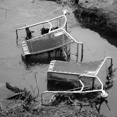 starcrossed lovers drowned in the river (lydiafairy) Tags: two blackandwhite bw water river square cart shoppingcarts riverwalk puyallup drowned starcrossedlovers flickrchallengegroup flickrchallengewinner