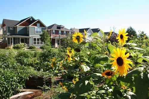 Highlands' Garden Village (courtesy of Perry Rose)