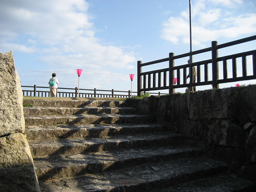 大竹 亀居公園 桜 画像 30