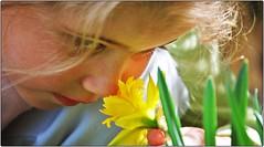 179 (alld....) Tags: flor criana menina cheirando amarela