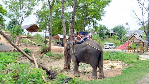 Phuket Apr 2010