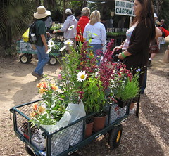 A full wagon (jpotter3) Tags: fullertonarboretum greenscene gardensale
