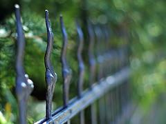 blink! (~janne) Tags: green fence dof bokeh olympus grn zaun janne janusz summiluxr e520 ziob