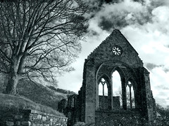 11 (TheTherapist) Tags: heritage abandoned monochrome abbey wales architecture ancient ruins gothic ruin tint monastery cistercian derelict llangollen thirteenthcentury vallecrucis