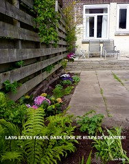 My pimped garden (LiesBaas) Tags: blue windows plants house green home garden groen blauw ramen seats tuin huis planten 2010 stoeltjes kleurenfotografie colourphotographie liesbaas