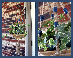 Blueberries (Macramaking- Natural Macrame Plant Hangers) Tags: wood plants mountains kitchen beauty vintage happy idea beads spring pretty basket sink natural handmade unique decorative character small barrel cottage creative fluffy curls northcarolina funky deck blueberry gift porch shelby hanging flowing chic weavers groovy knots sunroom swirly beachhouse detailed hangingbasket shabby twisting artscrafts jute containergardening macram veryspecial planthanger alternating mothersdaygifts macramakin macramaking httpwwwetsycomshopmacramaking