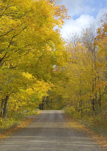 Orillia - Back Roads in Autum (3)