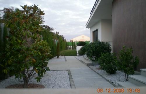 Vivienda Unifamiliar Aislada. Sector 20. Linares. (6)
