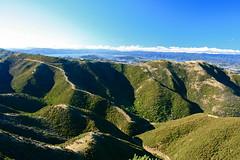 Tip Track to skyline- Wellington City New Zealand (Steve Attwood) Tags: newzealand sky cloud rural canon landscape coast bush harbour walkway wellington northisland tussock ridges valleys