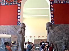 Pergamonmuseum (Miguel Tavares Cardoso) Tags: berlin museum germany deutschland pergamonmuseum berlim pergamon miguelcardoso worldtrekker miguelcardoso2008 migueltavarescardoso